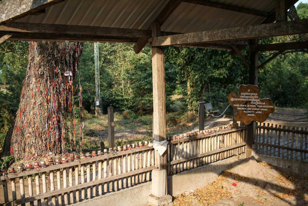 arvore-campo-concetração-khmer