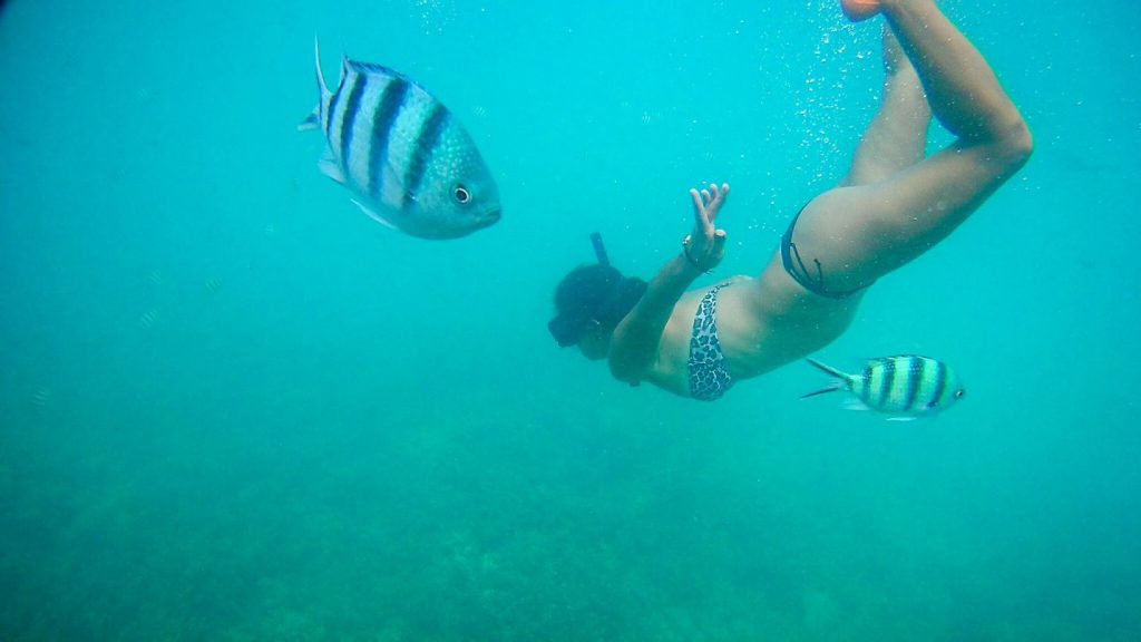 snorkeling-ilhas-perhentian