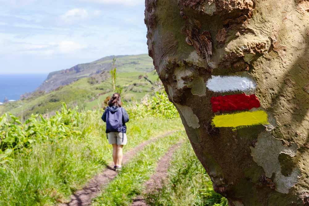 Árvore mostrando sinalética de percurso pedestre na Ilha das Flores