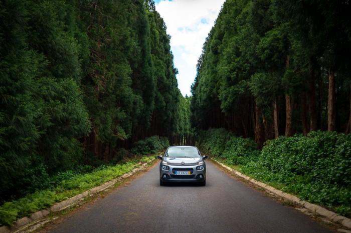 Carro em estrada rodeada de árvores na Ilha das Flores